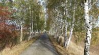 Radweg bei Klein Bademeusel