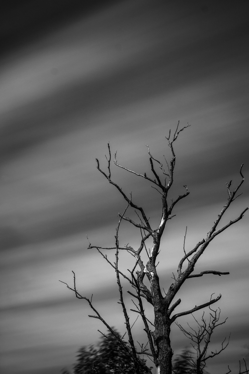 Wolkenfantasie in S/W
