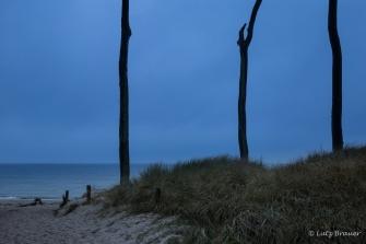 Darß - Weststrand