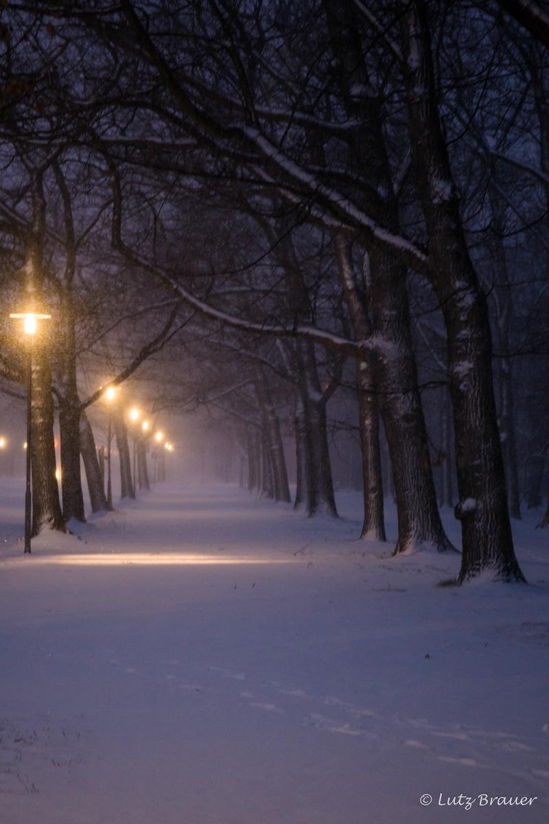 Winter_20171210_142-2